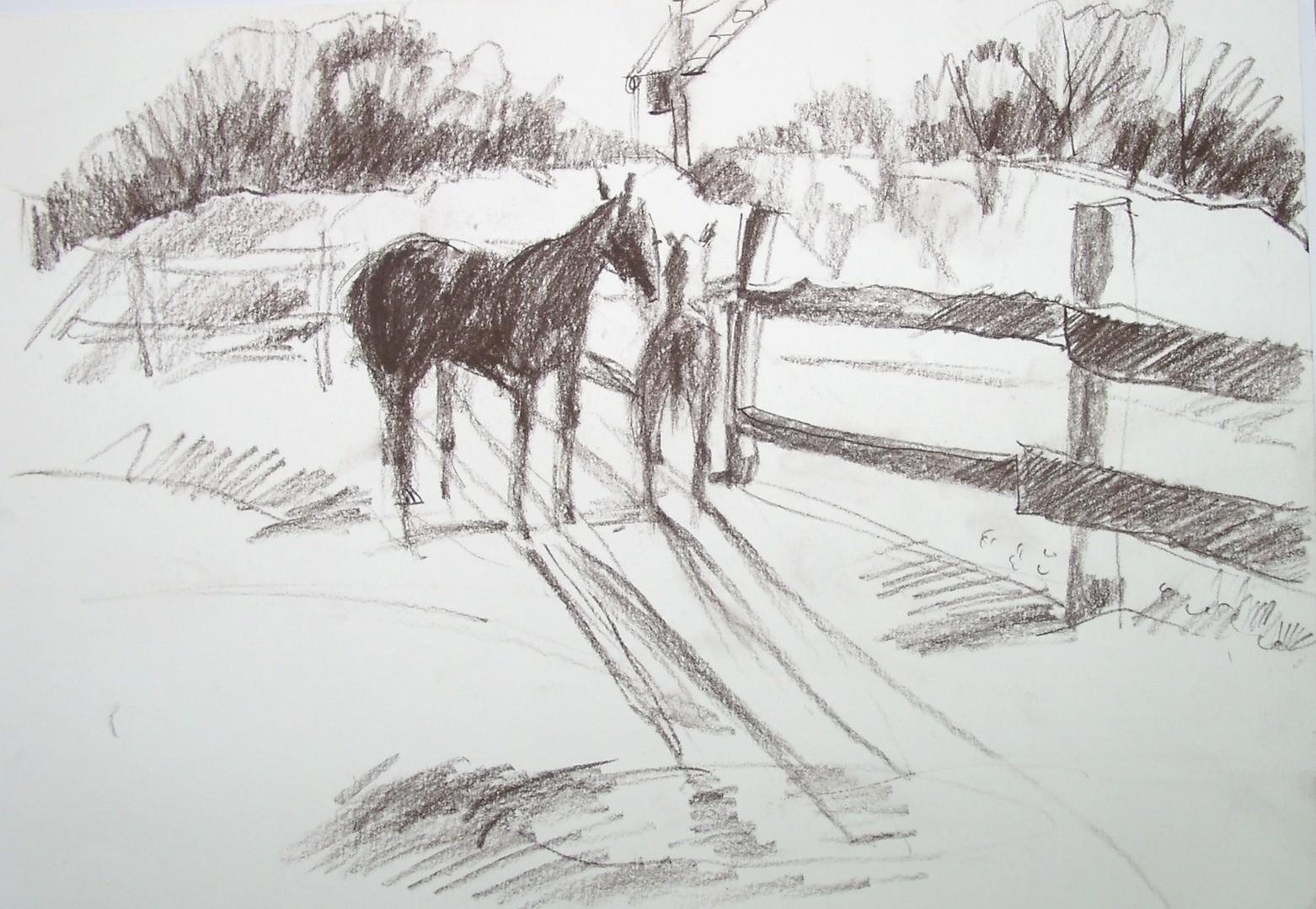 Картошкина С.К. Ходят кони